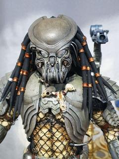 Hot Toys Celtic Predator Custom