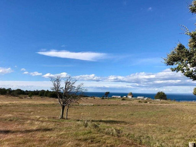 Parcela Sector Sur Agua Fresca De Punta Arenas