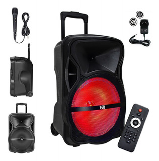 Parlante Portátil Bluetooth Radio Fm Luces 12 Pulgadas 4500w