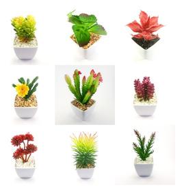 Kit Top 5 Vasos Sortidos Suculenta Decoração Design Casa