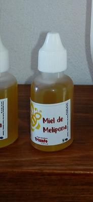 Miel Melipona