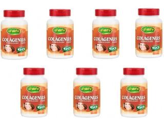 Colagenus Pure Hidrolizado 60 Caps 450mg Unilife Kit Com 7