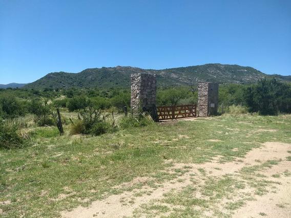 2500m2 Con Proyecto Turistico