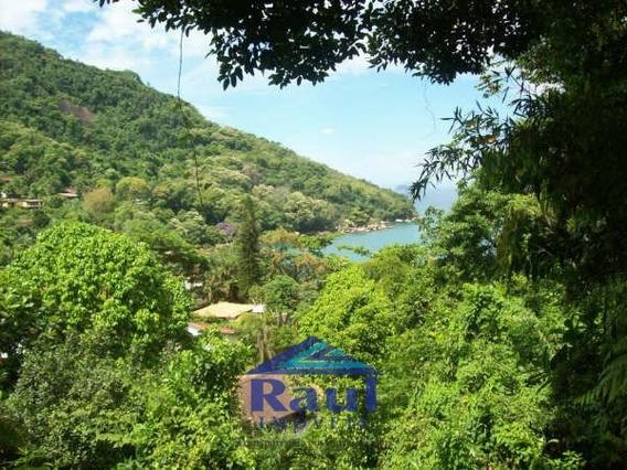 Venda Terreno - Pinciguaba, Ubatuba-sp - 2858-1
