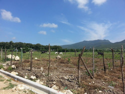 Coalicion Vende Solares En Villa Gonzalez A 1300 Mts2