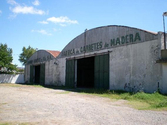 Venta Nave Industrial 3.000 M2 Cub. - Tigre