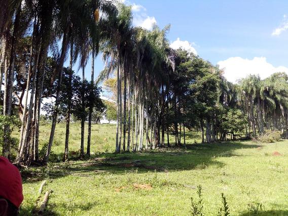 Fazenda 11ha Em Côrrego Fundo - Mg