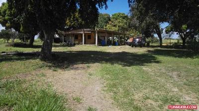 Family House Maturin Haciendas - Fincas En Venta