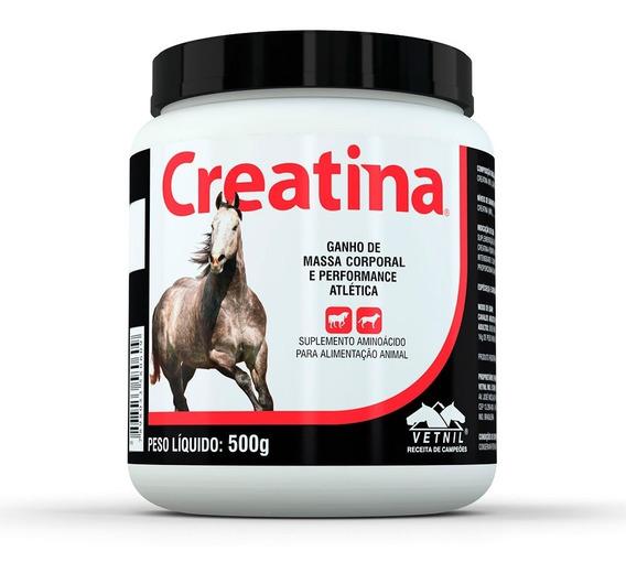 Creatina Suplemento Para Cães E Cavalos Vetnil 500g