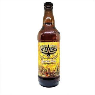 Caja X12 Cerveza Artesanal Honey Antares 500 Ml