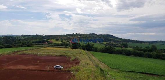 Sítio À Venda, 35512 M² Por R$ 530.000,00 - Fazenda Nata - Londrina/pr - Si0004