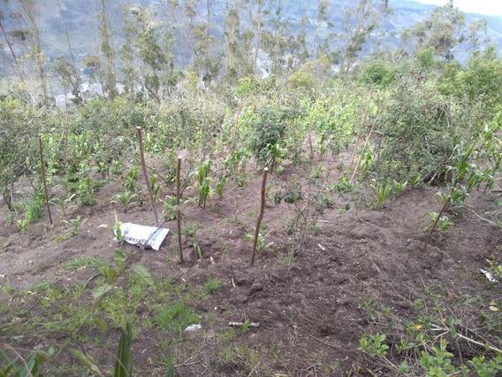 Se Vende Terreno En Bayushig