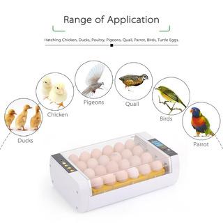 Incubadora Automtica De Huevos, Control De La Temperatura,