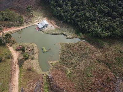 Sítio - Juquitiba - 10 Alqueires - Lago - Pasto - St00020