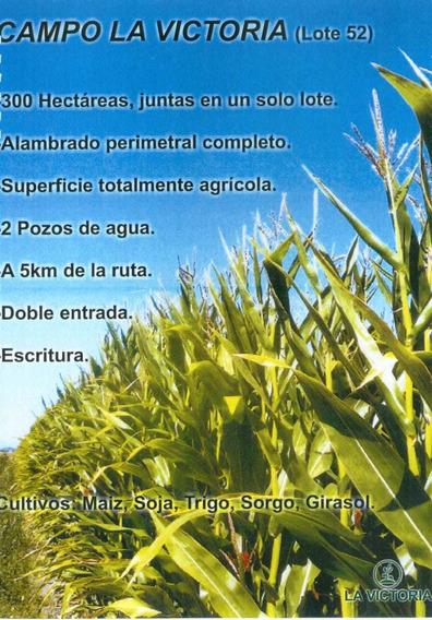 Vendo Campo 300 Hectáreas Agricola
