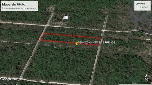 Imagen 1 de 6 de Temozon Norte Terrenos  De 12 X 30 Por Las Fincas