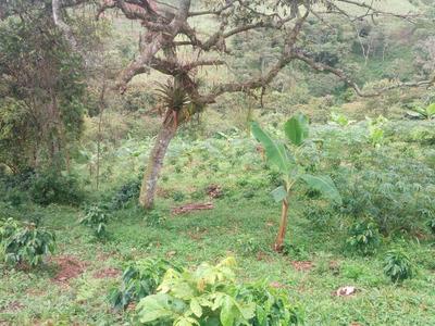 De Oportunidad Vendo Hermosa Finca Agropecuaria
