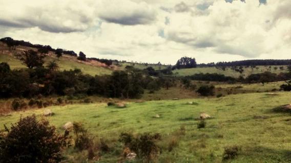 Terreno / Área Para Comprar No Região Córrego Do Soldado Em Itaúna/mg - 4886