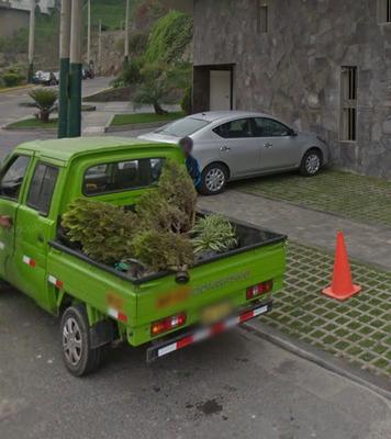 Jardinero Particular A Todo Lima : Instalo Grass, Y Poda