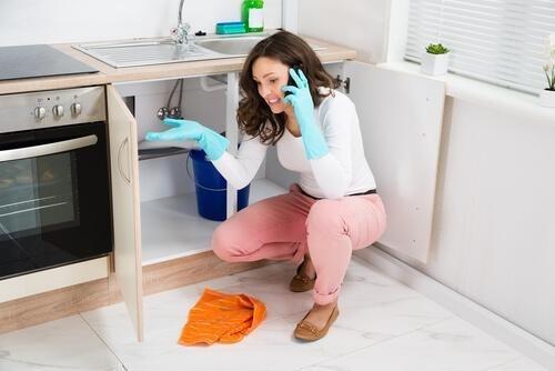 Sanitario Limpieza De Grasera Y Desobstruccion Wapp097549812