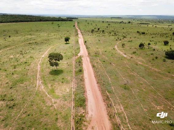 Excelente Fazenda Estado Mato Grosso