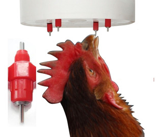 Bebederos Tipo Niple Para Pollos, Aves Despacho Inmediato