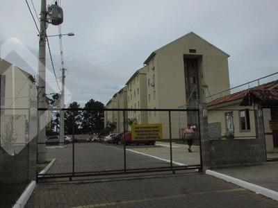 Apartamento - Restinga - Ref: 226946 - L-226946