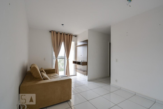 Apartamento Para Aluguel - Planalto, 3 Quartos, 60 - 893093657