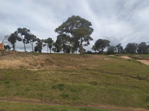 Imagem 1 de 5 de Terreno De Esquina No Asfalto Com Bela Vista No Ninho Verde 2 - 86