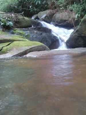 La Mejor Forma De Vivir Cerca De Bosque Playas Rios