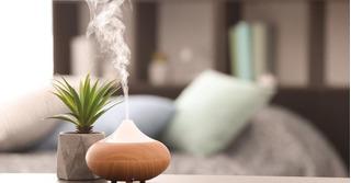 Humificador De Aire Para La Humedad, Aromaterapia Y Lámpara