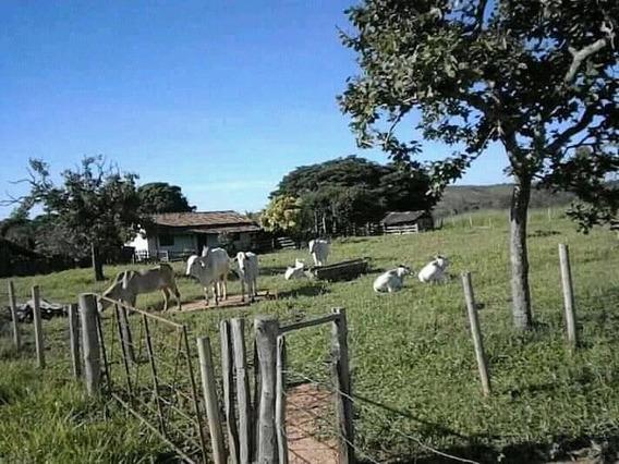 Sitio De 73 Hectares Noroeste De Minas
