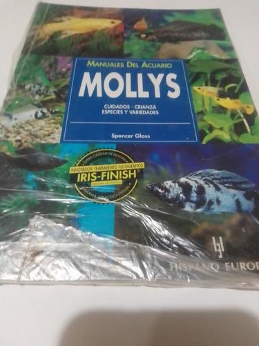 Imagen 1 de 4 de Peces Mollys Cuidados Y Todo Lo Que Necesites Saber