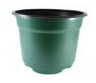 Maceta 6 Verde Termoformada