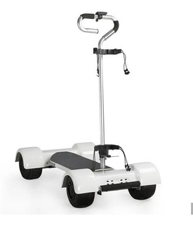 Monopatín Scooter Golf Golfboard Ecorider Carro Golf