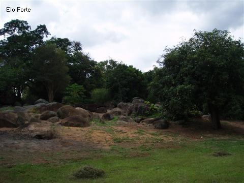Imagem 1 de 3 de Sitio A Venda, Tombadouro , Indaiatuba - St00043 - 1531683