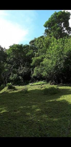 Vendo Terreno En Iguazu (ref.#436005) Lvr