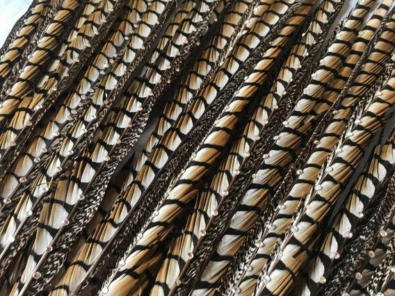 30 Plumas Faisán (60-70cm)