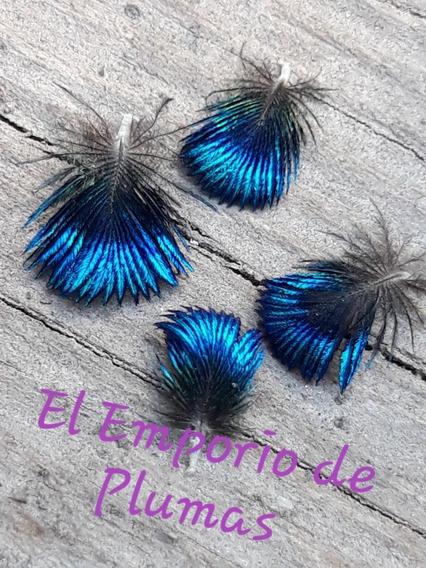 Plumas Mini Naturales De Pavo Real Color Original Azul Metal