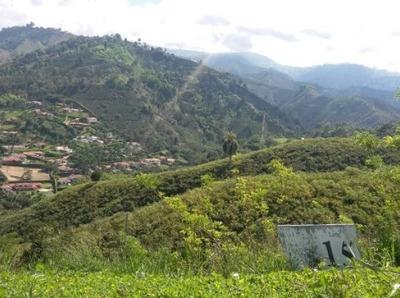 Venta Lote En San Bernardo Del Viento, Manizales