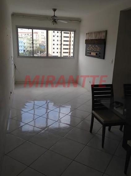 Apartamento Em Macedo - Guarulhos, Sp - 336527