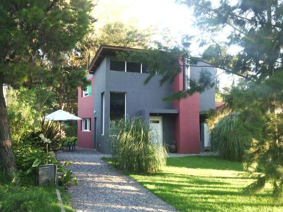 Casa /loft / #bosqueart