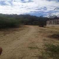 Finca Para Agricultura Y Ganaderia En Venta En Valverde, Mao