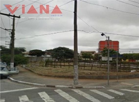 Terreno Para Aluguel, 0.0 M2, Saúde - São Paulo - 4133