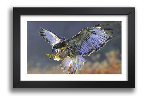 Imagem 1 de 6 de Quadro Aguia Aves Moldura Passaros Decoracao Sala Esc Kv 192