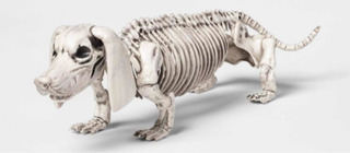Perro Esqueleto Halloween Dog Skeleton Decorative Halloween