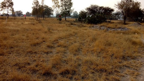 Terreno En Zumpango