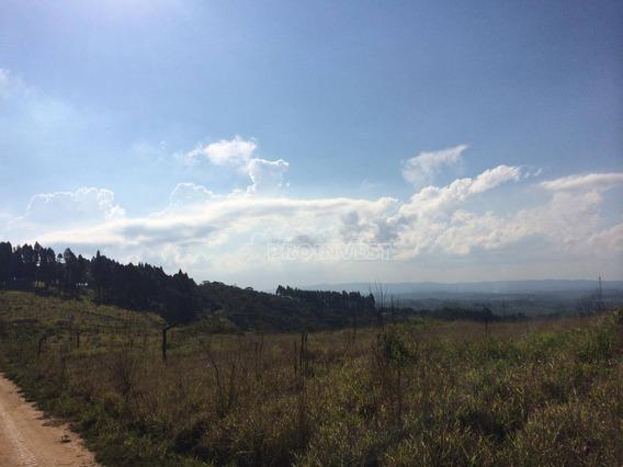 Área À Venda, 456000 M² Por R$ 20.000.000 - Jardim Monte Verde (caucaia Do Alto) - Cotia/sp - Ar0890