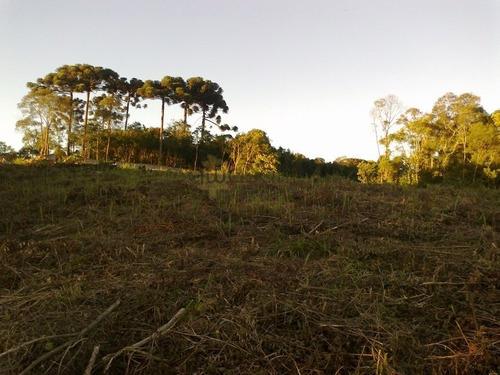 Terreno A Venda No Bairro Campo Pequeno Em Colombo - Pr.  - 5325-1