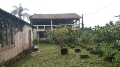 Casa Com Edícula - Caseiro E Árvores Frutíferas